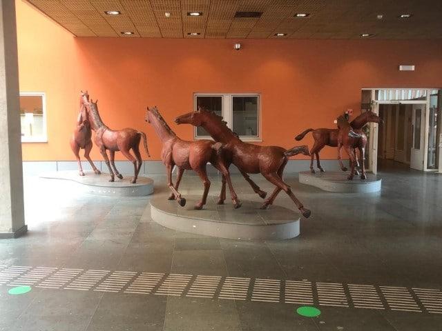 Diëtistenpraktijk Carin Pool UMCG - Paarden in hal